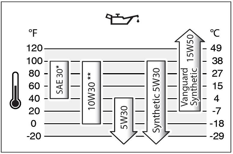 Motoren ÖL Briggs & Stratton SAE 30 - 0,6 L